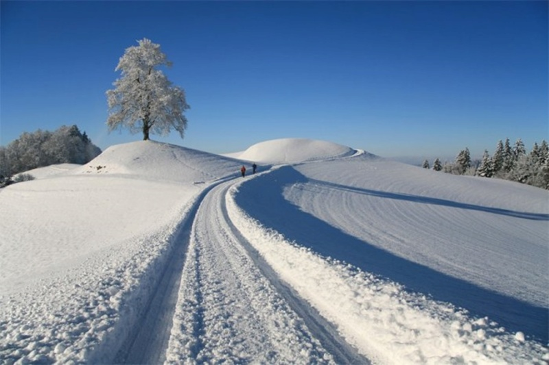 Zimski pejzaži-Winter landscapes - Page 26 12599516