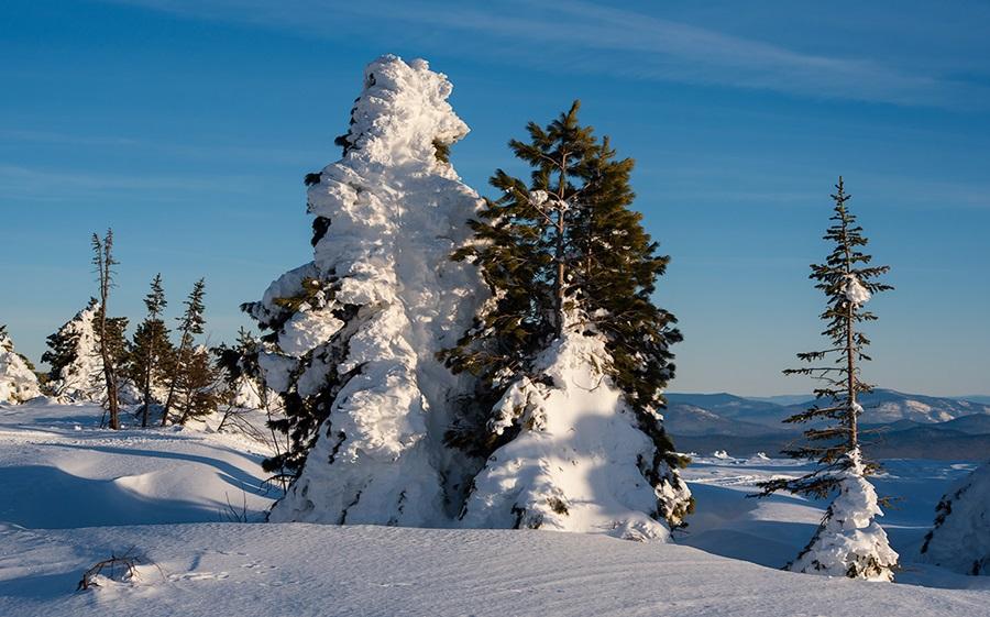 Zimski pejzaži-Winter landscapes - Page 15 14609810