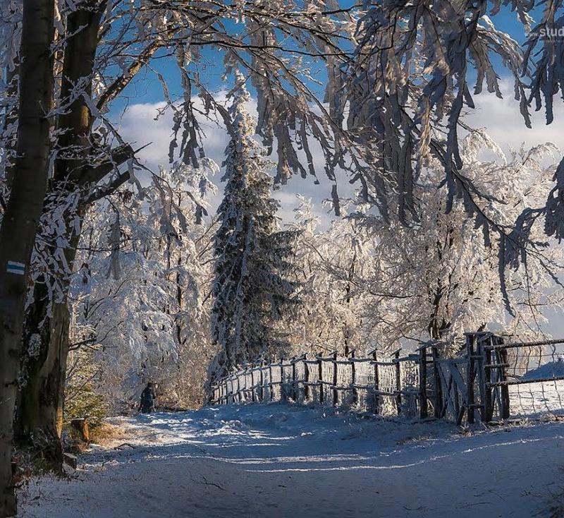 Zimski pejzaži-Winter landscapes - Page 21 26156410
