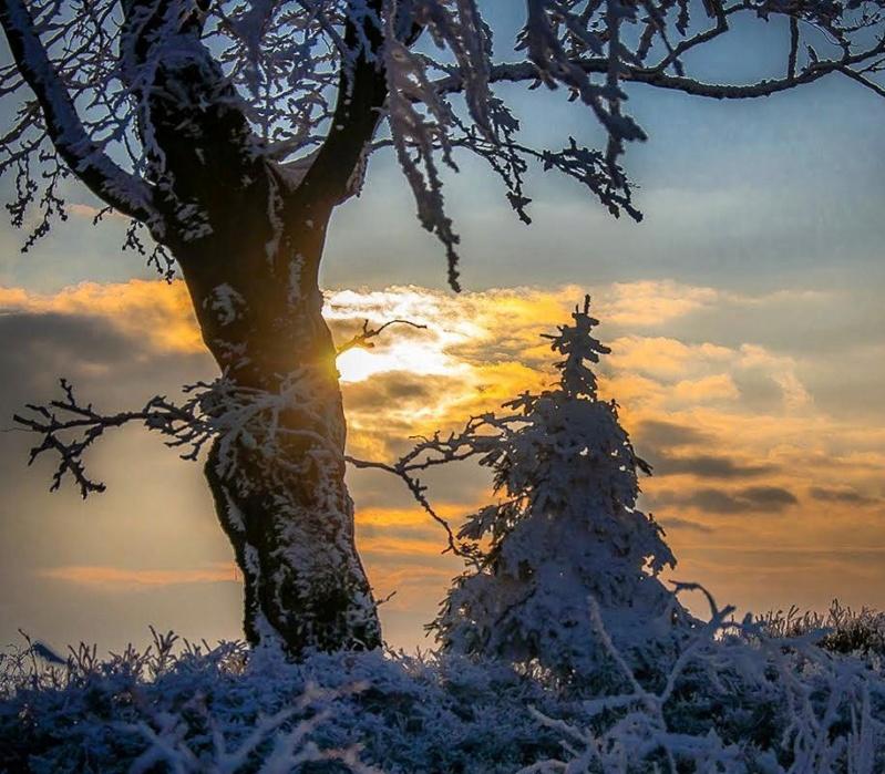 Zimski pejzaži-Winter landscapes - Page 21 26864710