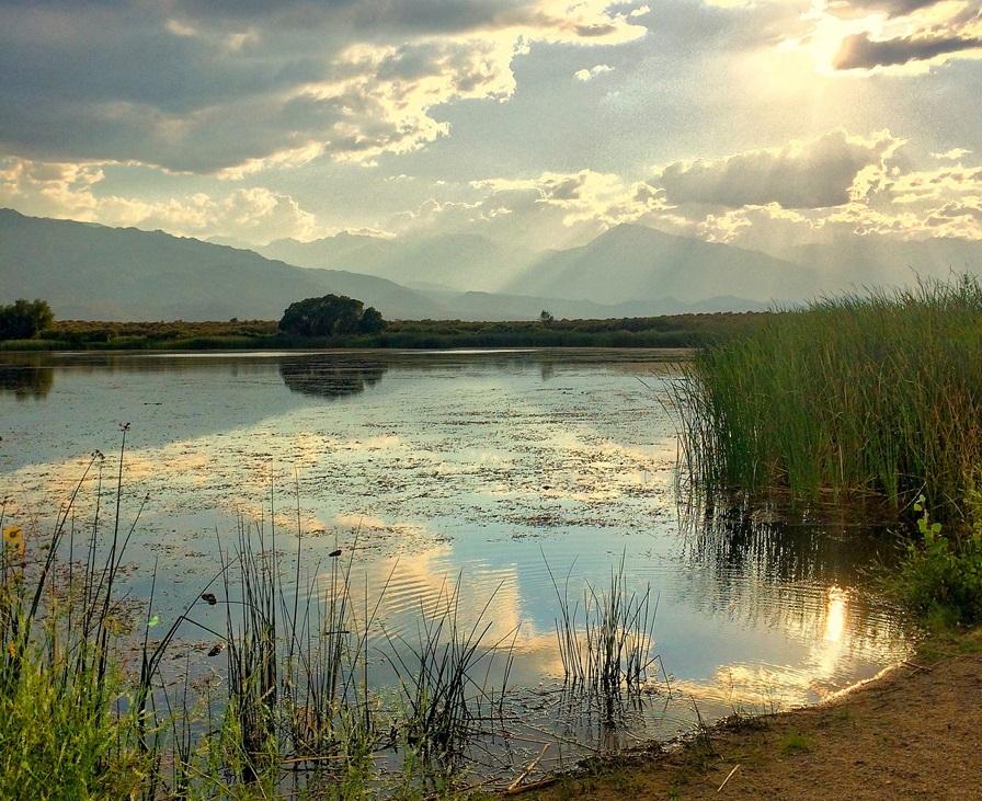 More,jezero,reka...plaža,palma... - Page 27 36373110
