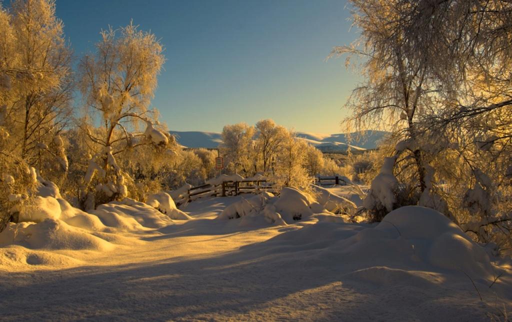 Zimski pejzaži-Winter landscapes - Page 24 42593610