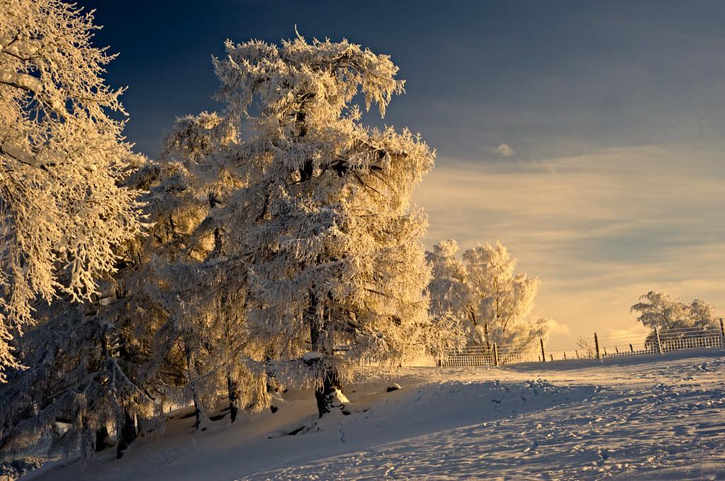 Zimski pejzaži-Winter landscapes - Page 24 42625810