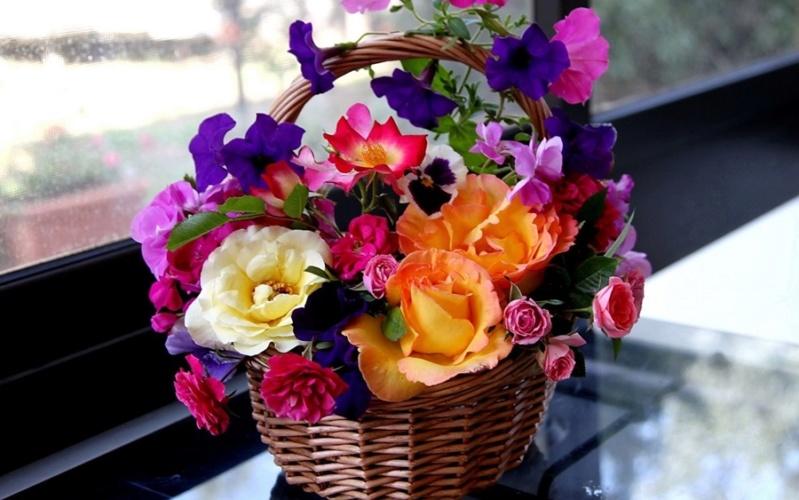Cveće - Page 31 45284f10