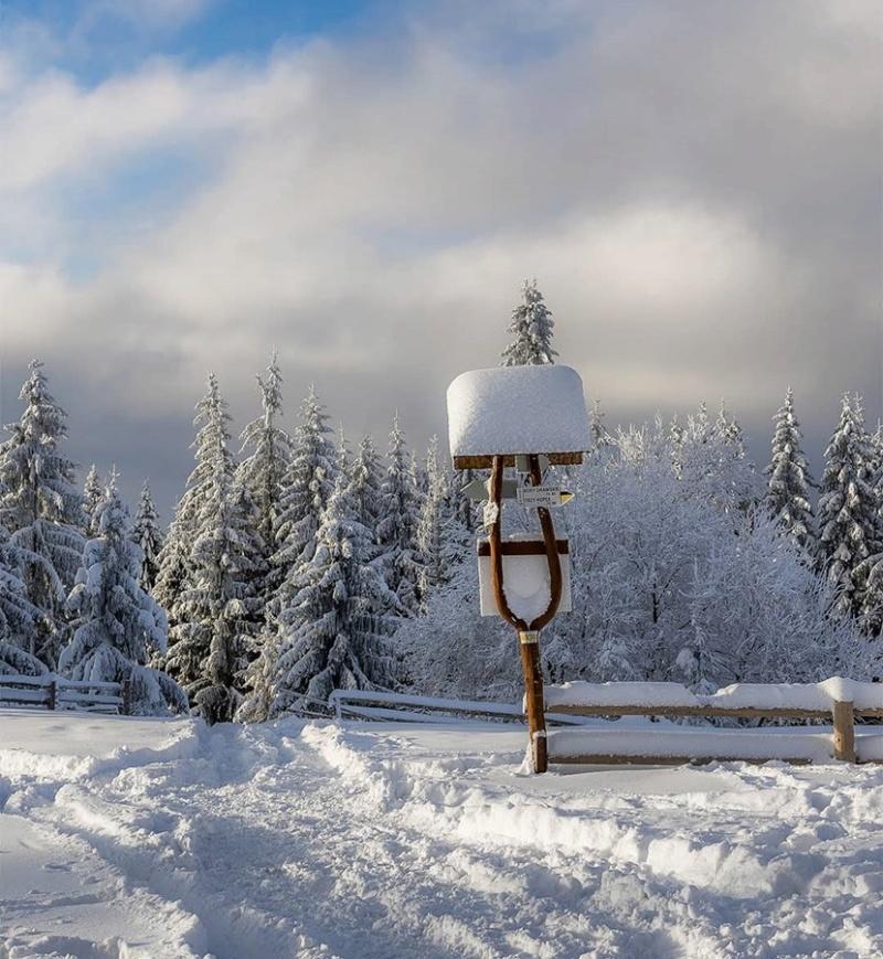 Zimski pejzaži-Winter landscapes - Page 21 47500710