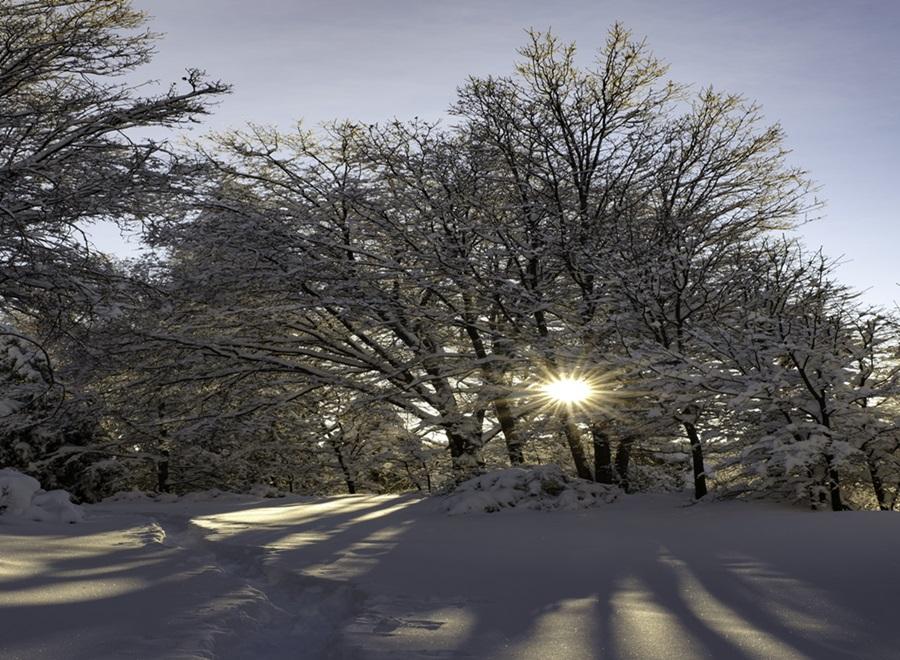 Zimski pejzaži-Winter landscapes - Page 26 49149410