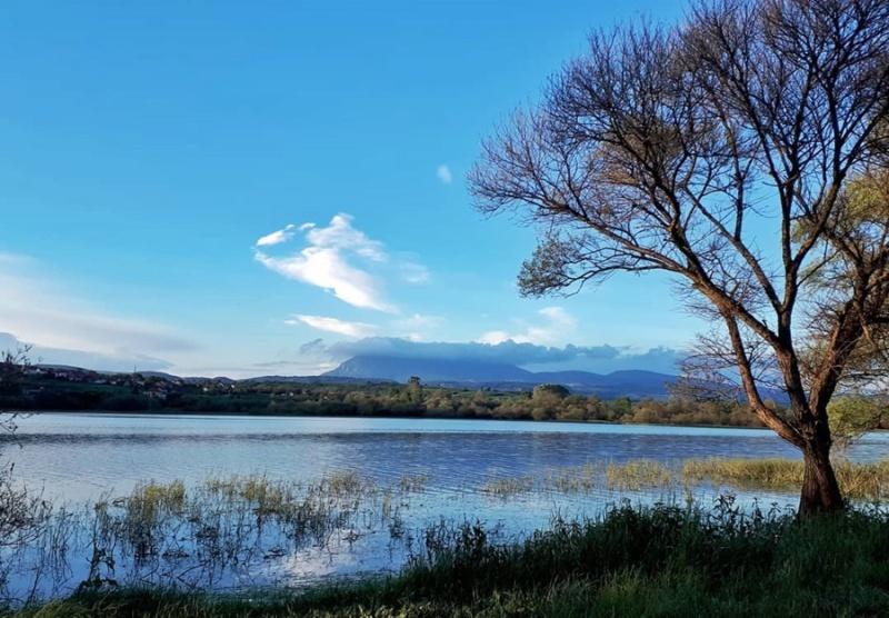 More,jezero,reka...plaža,palma... - Page 35 60229910