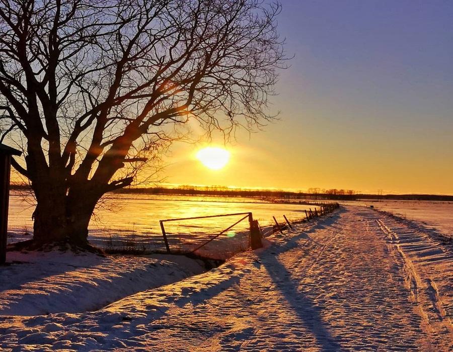 Zimski pejzaži-Winter landscapes - Page 26 73210510