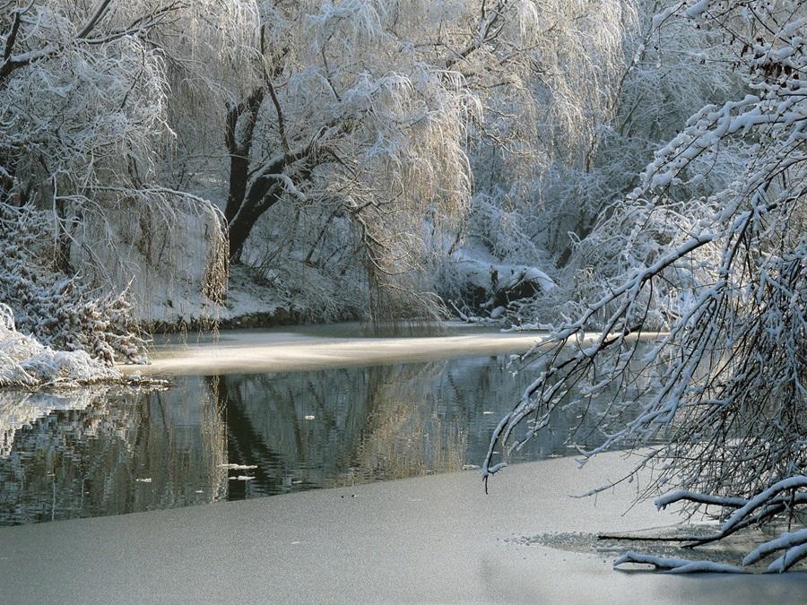 Zimski pejzaži-Winter landscapes - Page 22 86943410