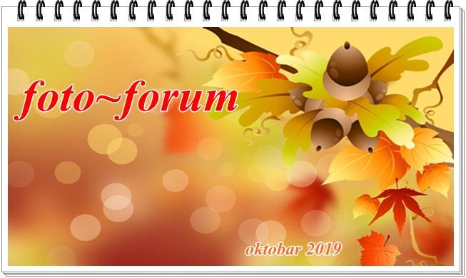 Foto-forum
