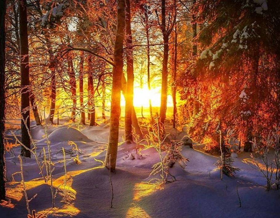 Zimski pejzaži-Winter landscapes - Page 16 Captu113