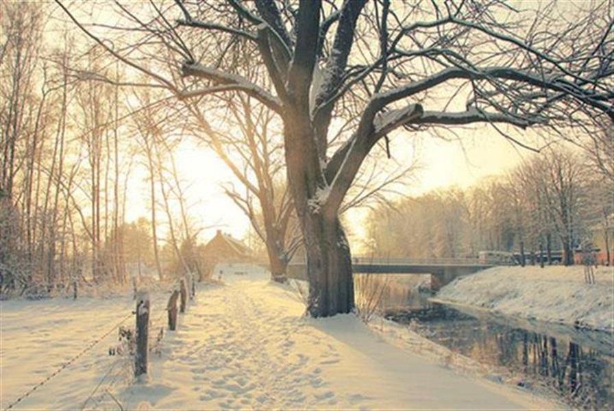 Zimski pejzaži-Winter landscapes - Page 15 D0zri510