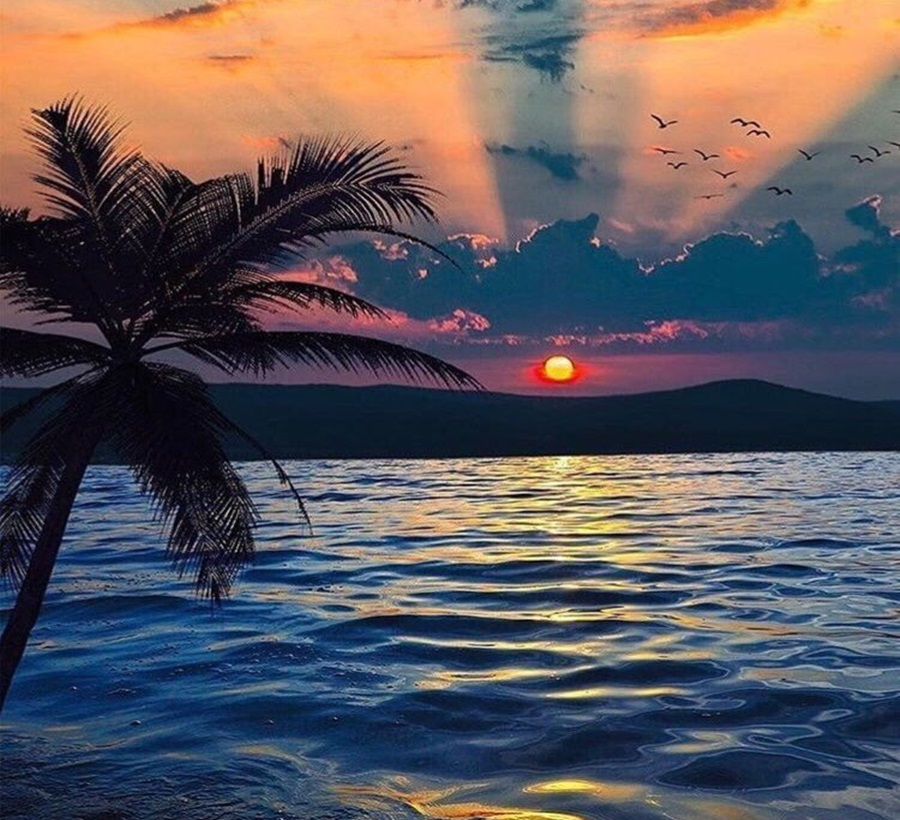 More,jezero,reka...plaža,palma... - Page 31 D4el3w10