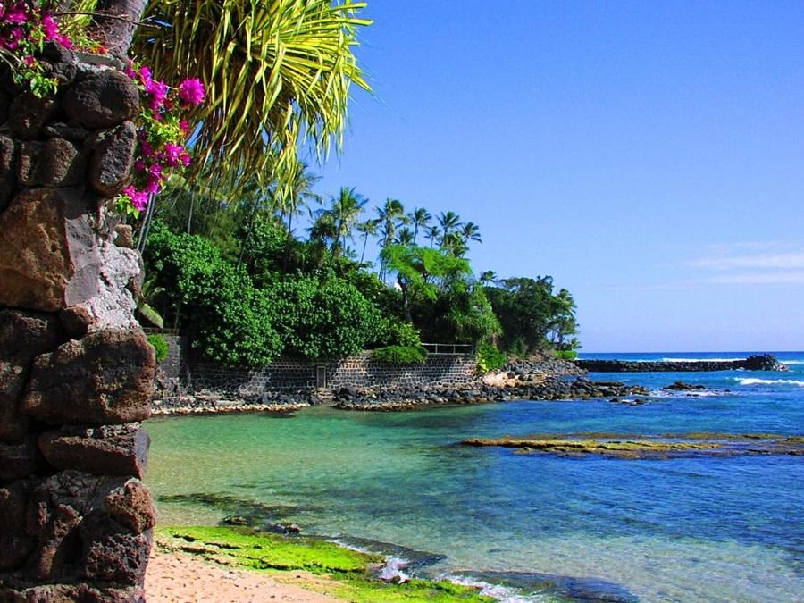 More,jezero,reka...plaža,palma... - Page 26 Dnmaub10