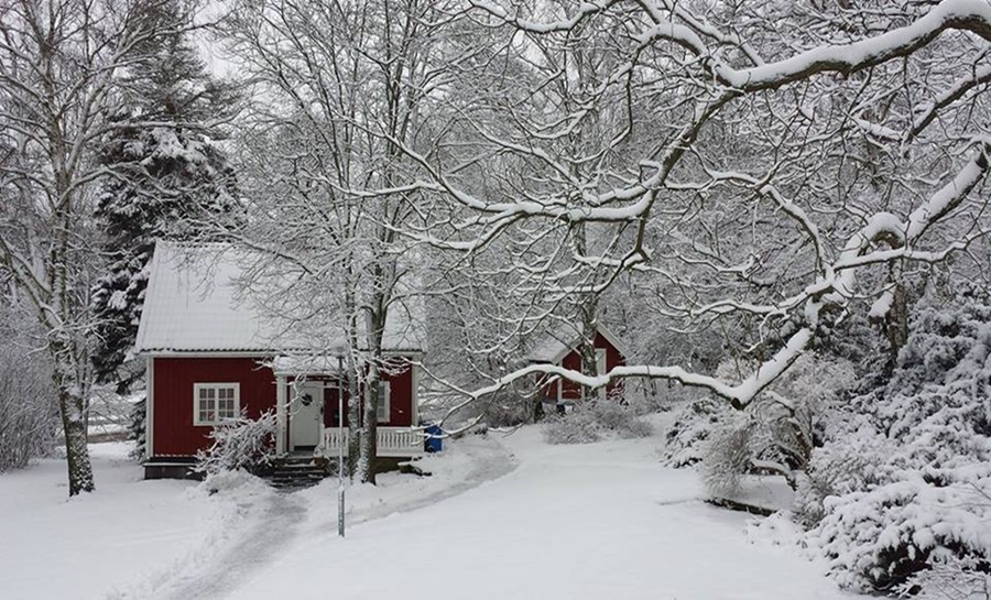 Zimski pejzaži-Winter landscapes Dxxlua10