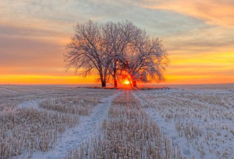 Zimski pejzaži-Winter landscapes - Page 24 Ejogoj10
