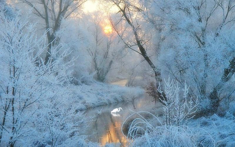 Zimski pejzaži-Winter landscapes - Page 26 Ek6pb910