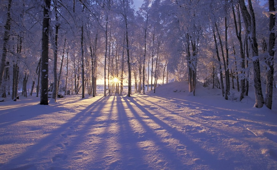 Zimski pejzaži-Winter landscapes - Page 24 Eke_a910