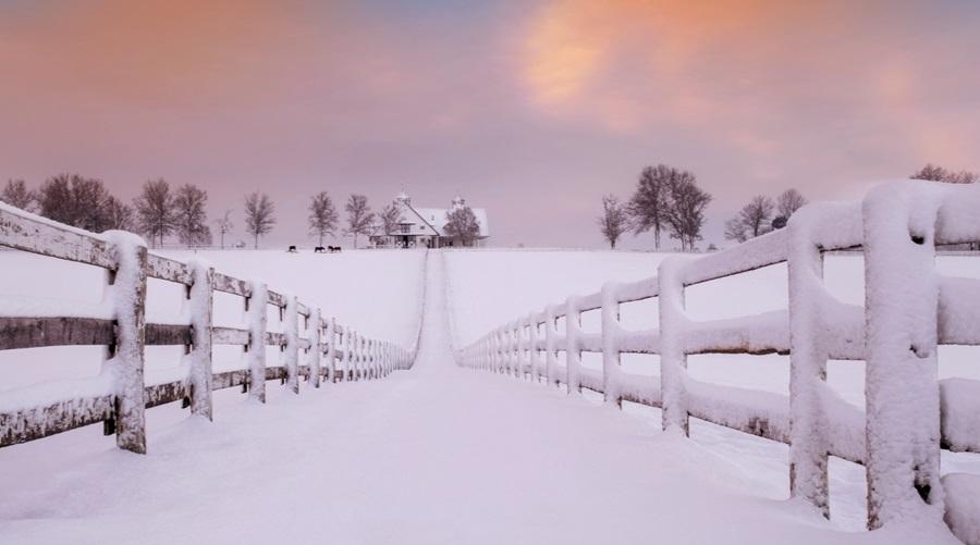 Zimski pejzaži-Winter landscapes - Page 26 Ekv9db10