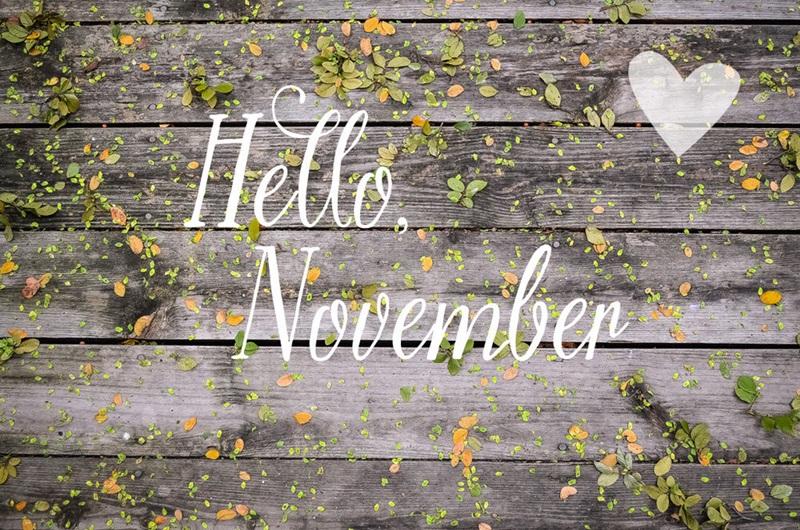 hello november Hello-10