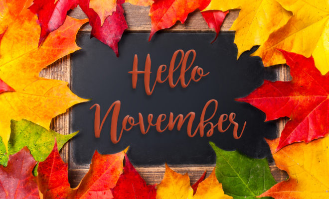 hello november Hello-11