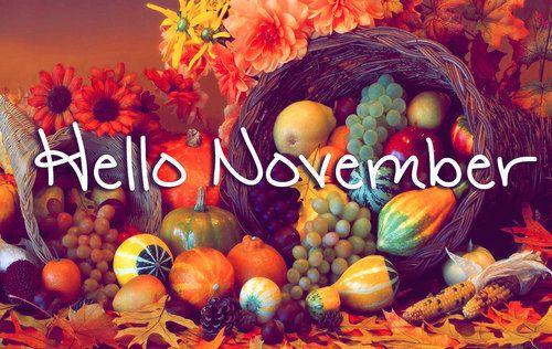 hello november Hello-14