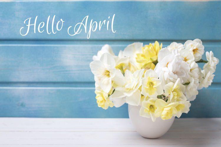 hello april Hello-21
