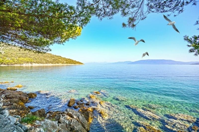 More,jezero,reka...plaža,palma... - Page 35 Jadran10