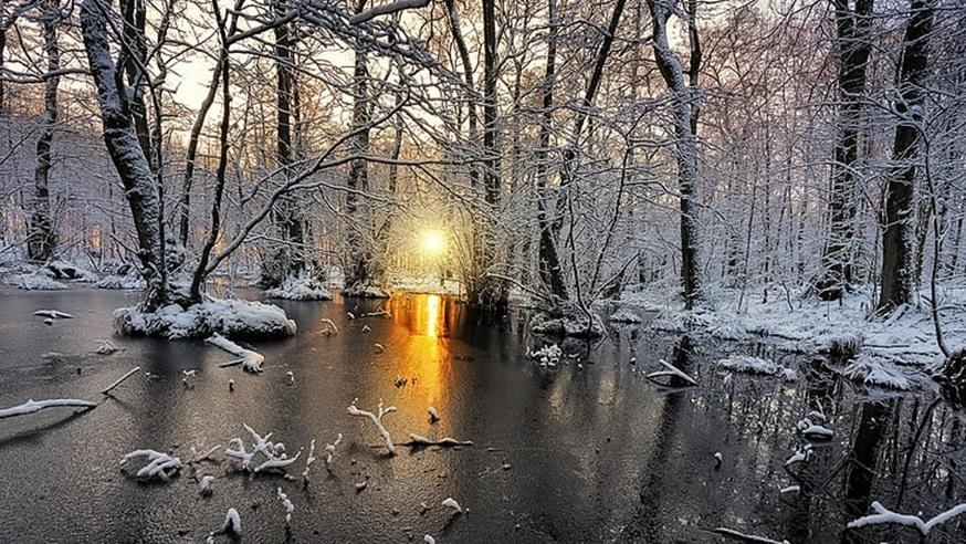 Zimski pejzaži-Winter landscapes - Page 26 Nature19
