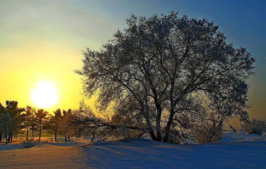 Zimski pejzaži-Winter landscapes - Page 22 Rossiy10