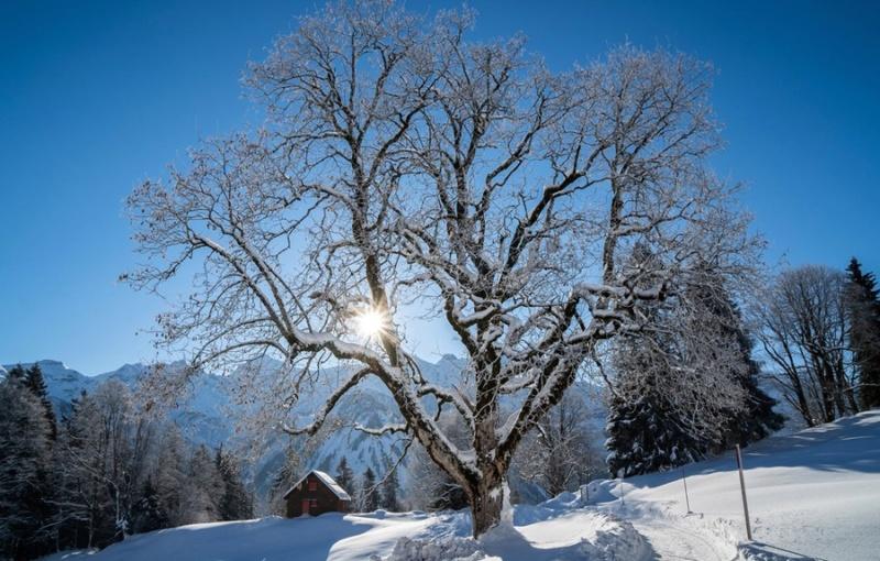 Zimski pejzaži-Winter landscapes - Page 22 Shveit10