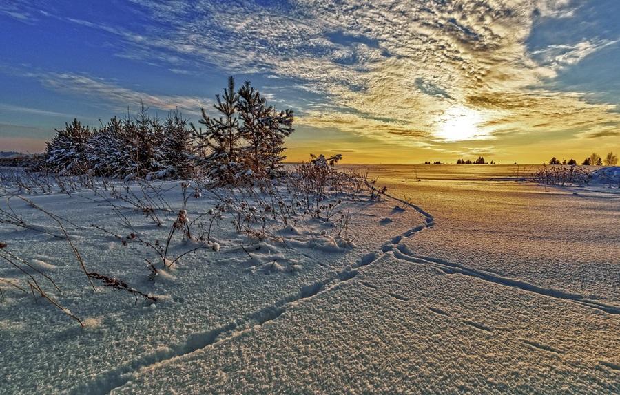 Zimski pejzaži-Winter landscapes - Page 22 Sneg-d10