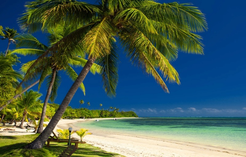 More,jezero,reka...plaža,palma... - Page 35 Tropus10