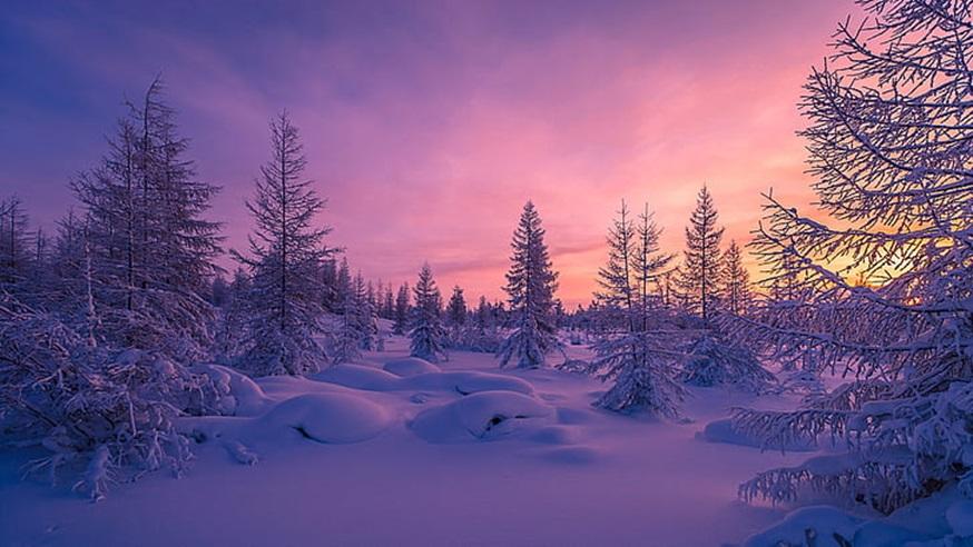 Zimski pejzaži-Winter landscapes - Page 26 Winter31