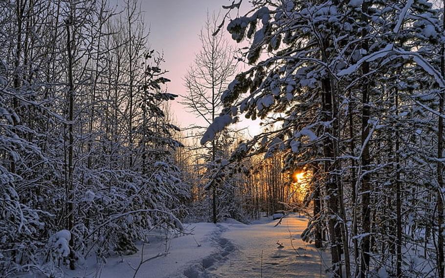 Zimski pejzaži-Winter landscapes - Page 26 Winter33