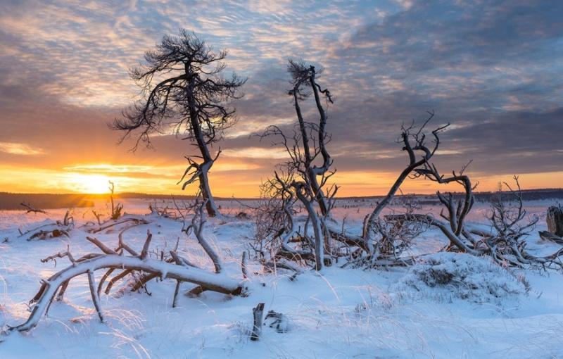 Zimski pejzaži-Winter landscapes - Page 22 Zima-d10