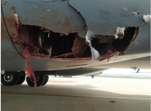 Un avion A400M « Atlas » espagnol sérieusement endommagé après une collision avec un oiseau A400m_10