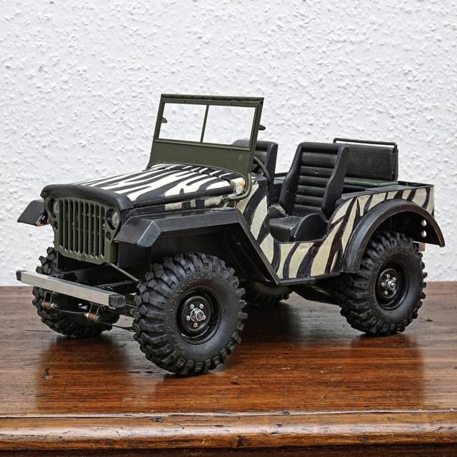 Veroma Jeep 1:8  Umbau Dsc01121