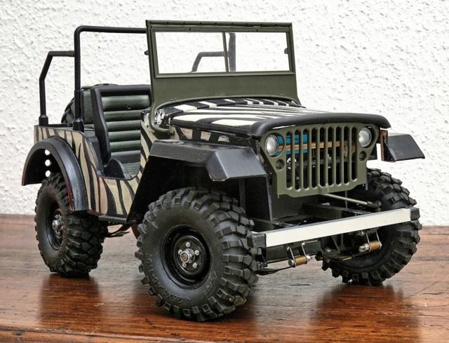 Veroma Jeep 1:8  Umbau Dsc01123