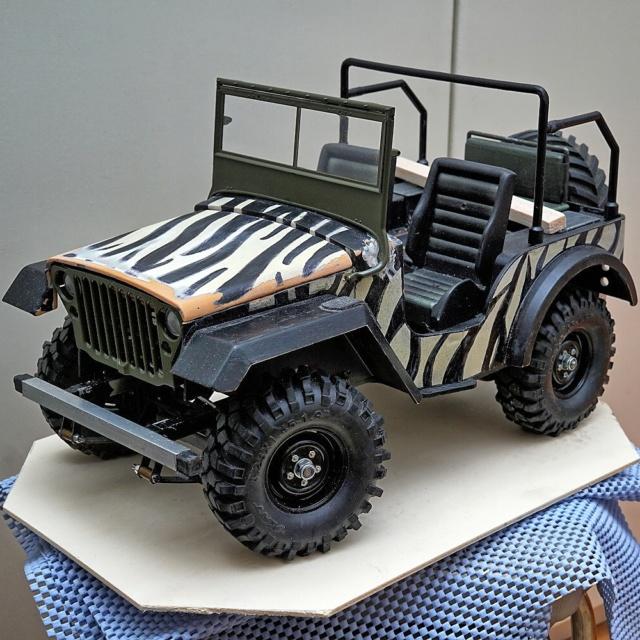 Veroma Jeep 1:8  Umbau - Seite 2 Dsc01124