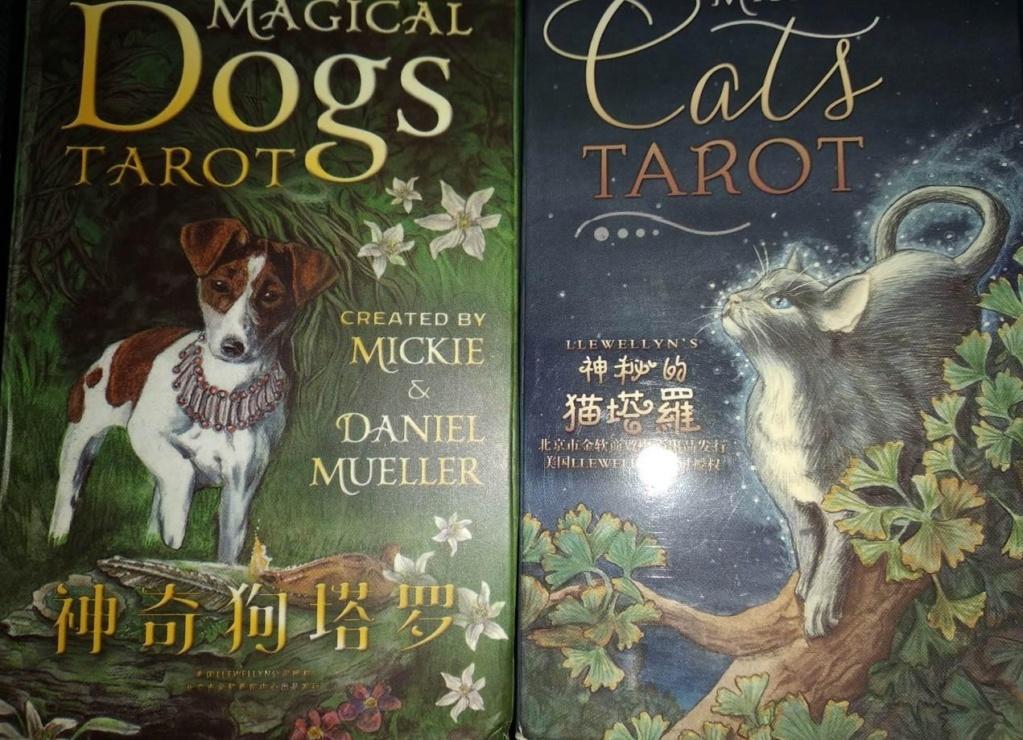 Акция на Таро Мистических Кошек и Собак) 0-02-203