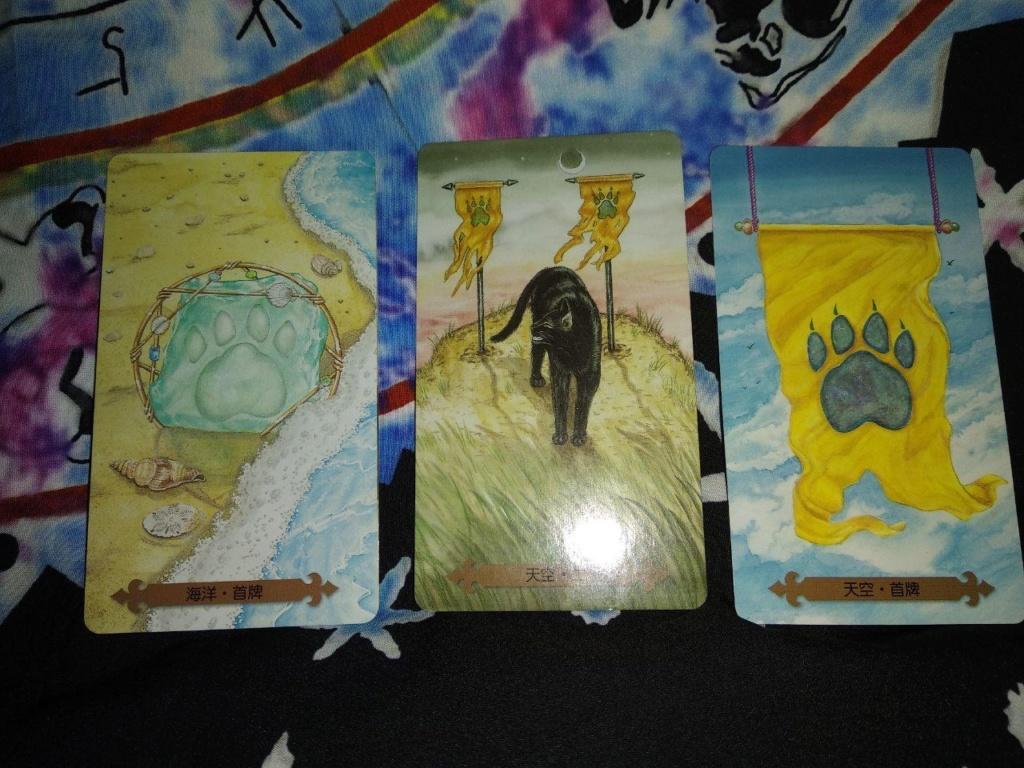 Акция на Таро Мистических Кошек и Собак) 0-02-206