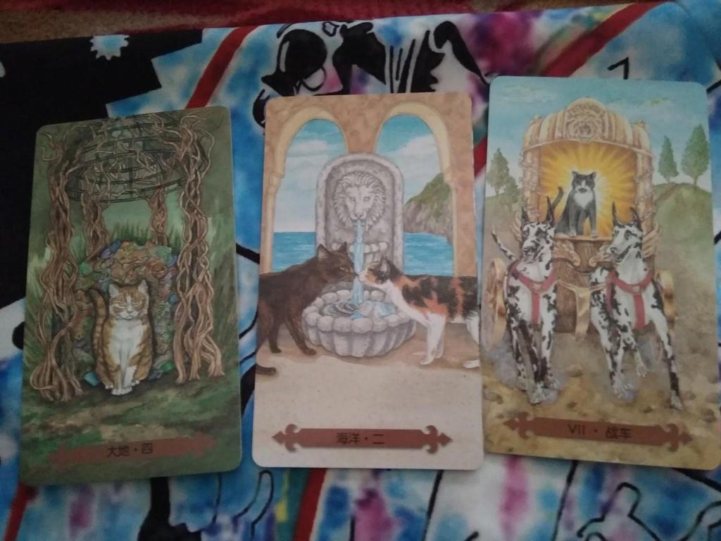 Акция на Таро Мистических Кошек и Собак) 0-02-208