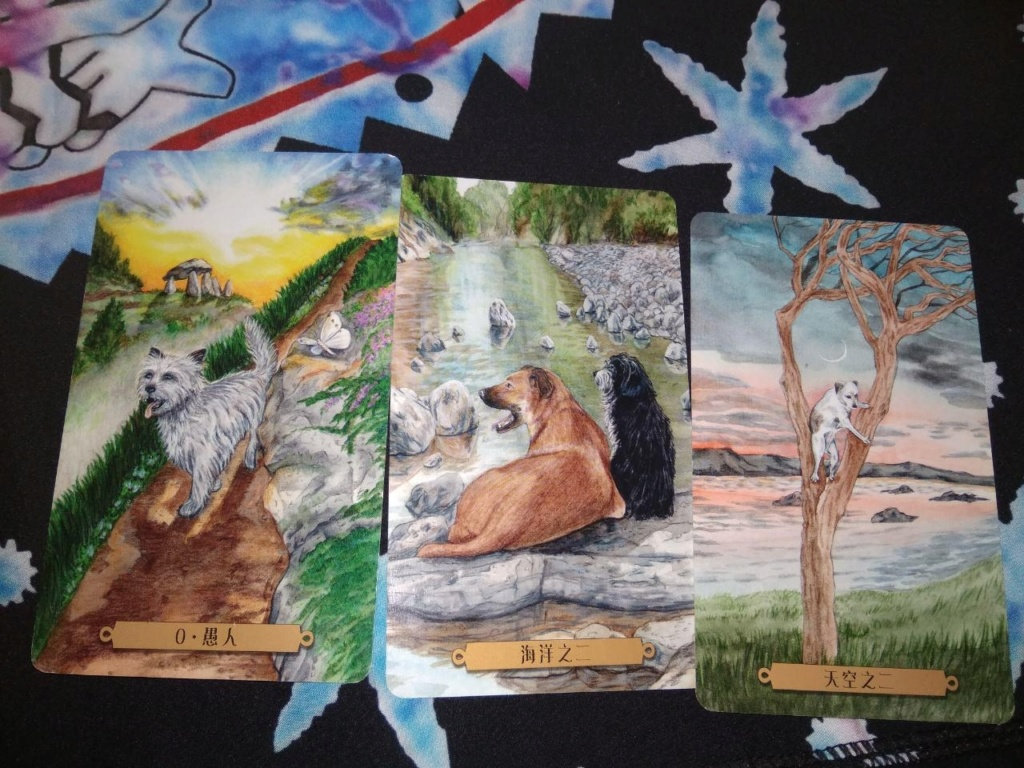 Акция на Таро Мистических Кошек и Собак) - Страница 2 0-02-213