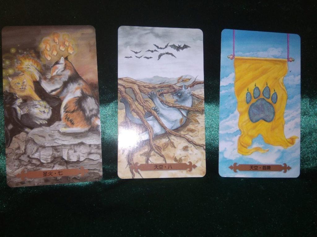 Акция на Таро Мистических Кошек и Собак) - Страница 4 0-02-245