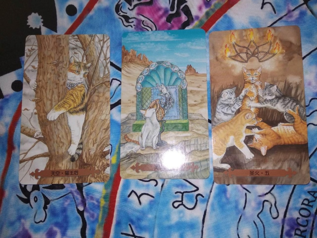 Акция на Таро Мистических Кошек и Собак) - Страница 2 A11