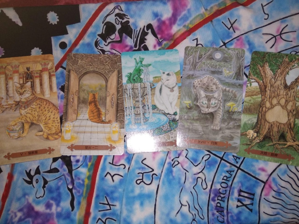 Акция на Таро Мистических Кошек и Собак) - Страница 3 A12