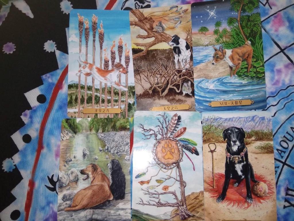 Акция на Таро Мистических Кошек и Собак) - Страница 3 U10