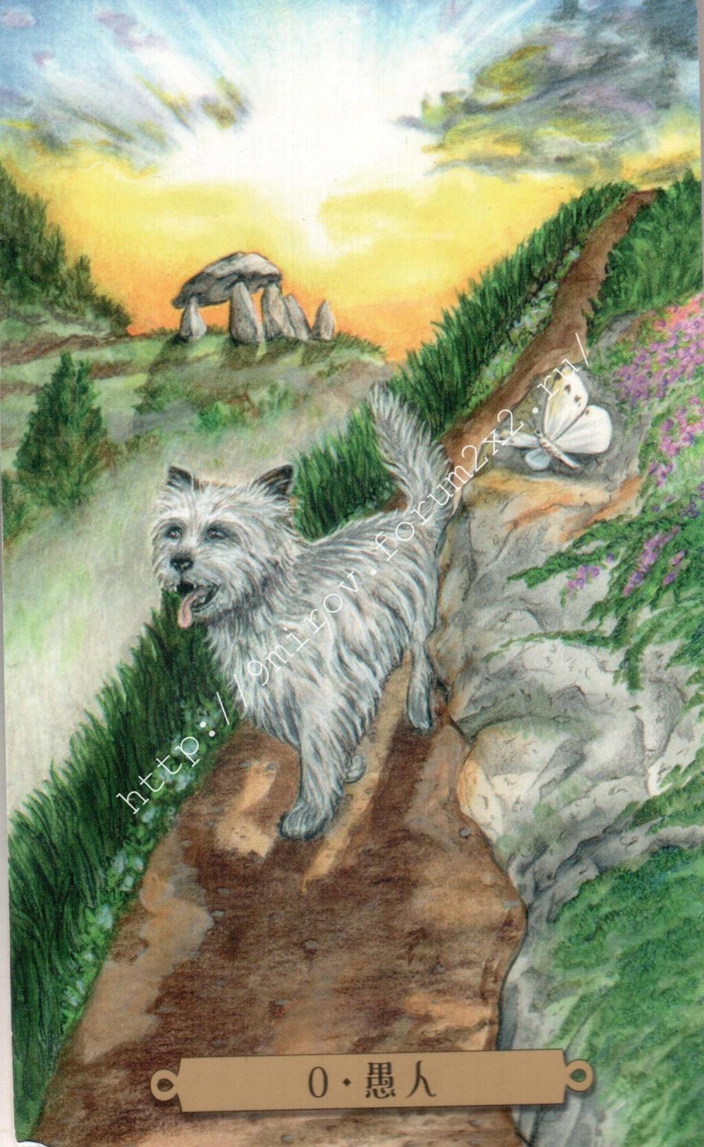 Таро мистических собак. Галерея. (китайская версия) Water173