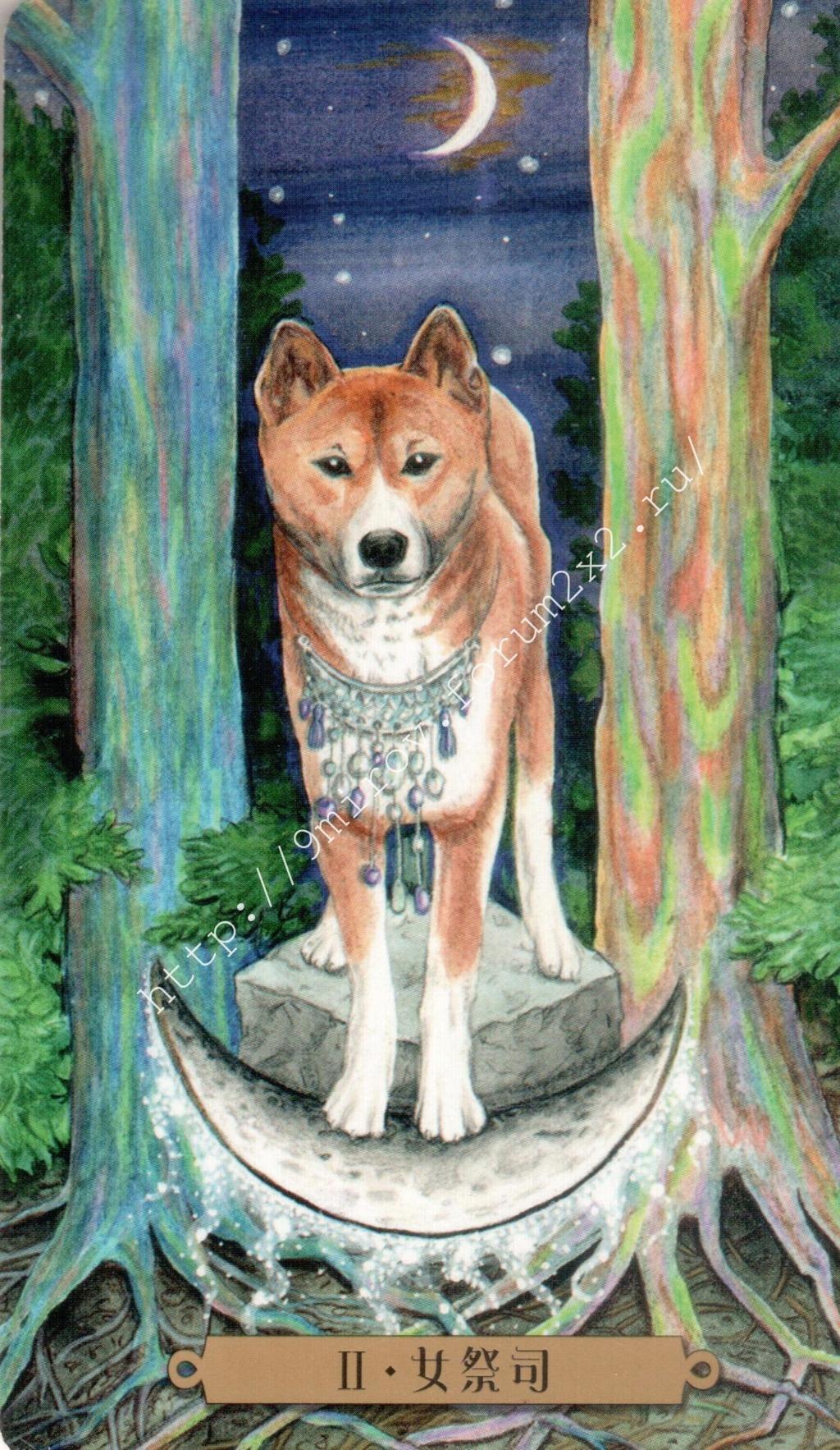 Таро мистических собак. Галерея. (китайская версия) Water175